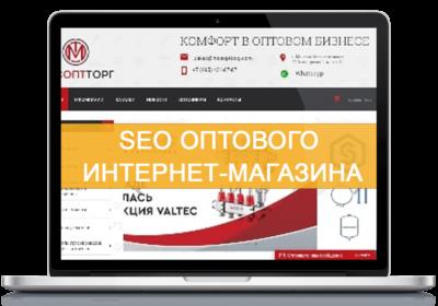 продвижение оптового магазина сайта интернет seo